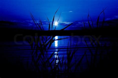 Mystical night (moonlight on the river,