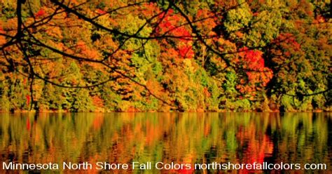 Fall Color and Woodland Harvests: A Guide to the More Colorful Fall Leaves and Fruits